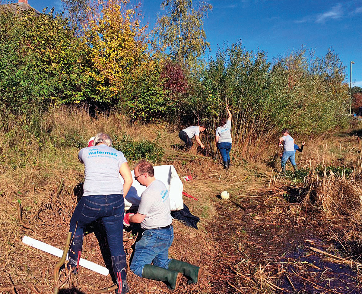 Xylem staff carrying out voluntary conservation work in an urban site in Basingstoke. (Photo: Basingstoke & Deane Borough Council)