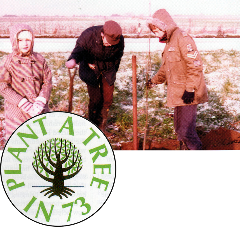 Plant a Tree in 73