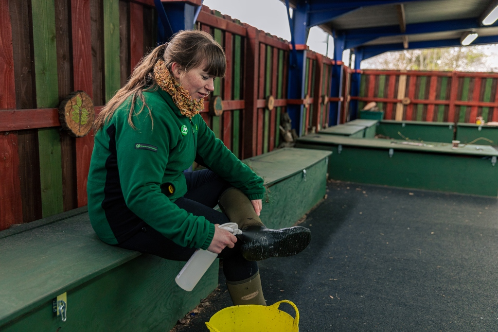A Forestry Commission worker sits on a bench spraying the bottom of one of her boots with a spray bottle