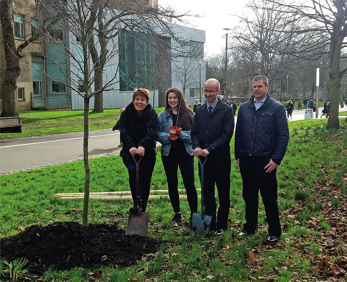 New urban trees funded by Investec through Tree Time Edinburgh. (Photo: Richard Darke)