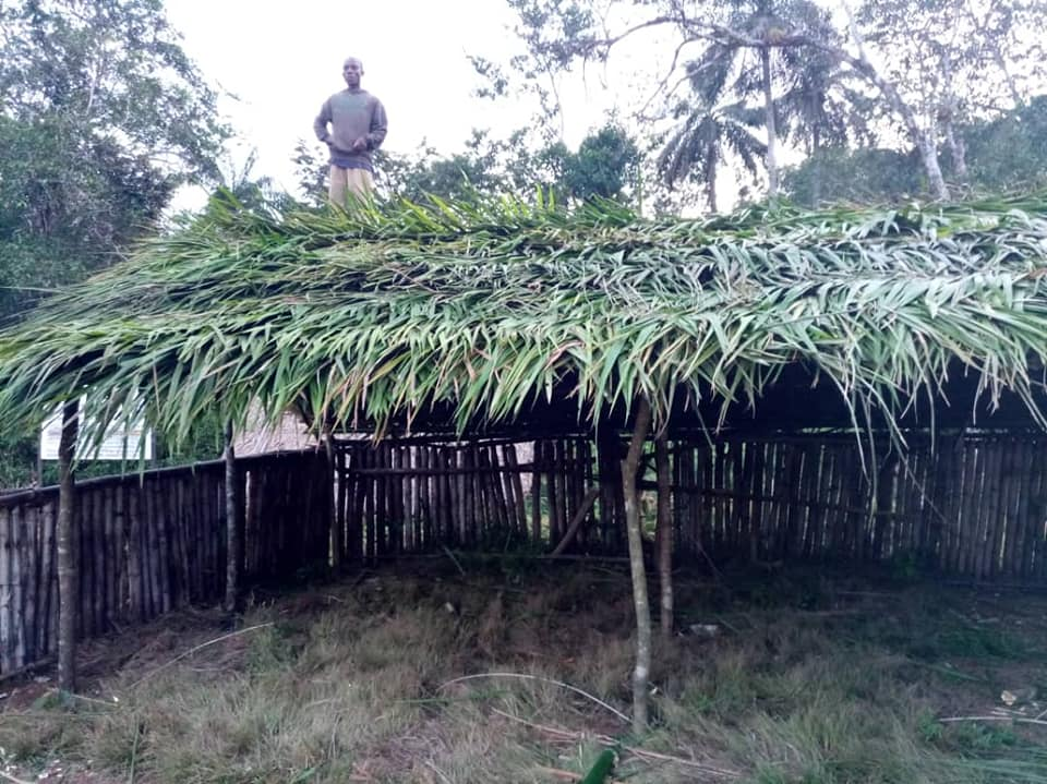 Temporary thatched classrooms