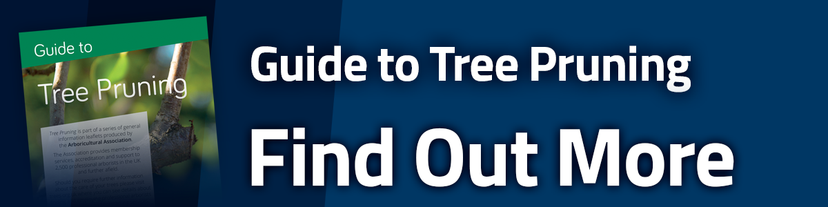 Find Out More about Tree Pruning
