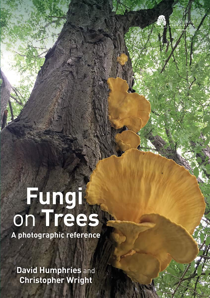 Fungi on Trees: A photographic reference