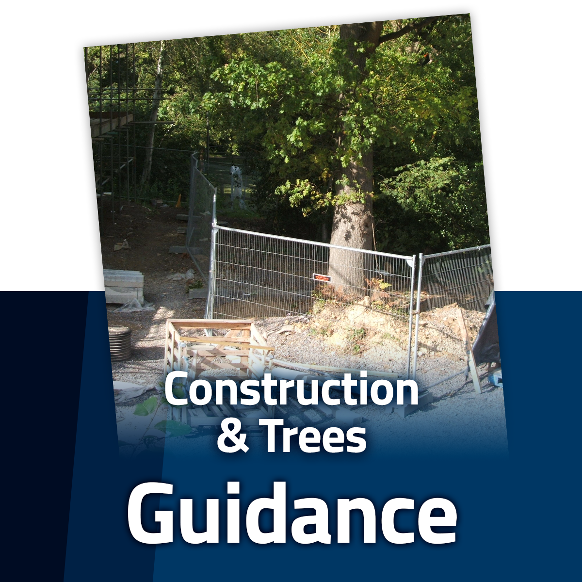 Guide to Trees and Construction