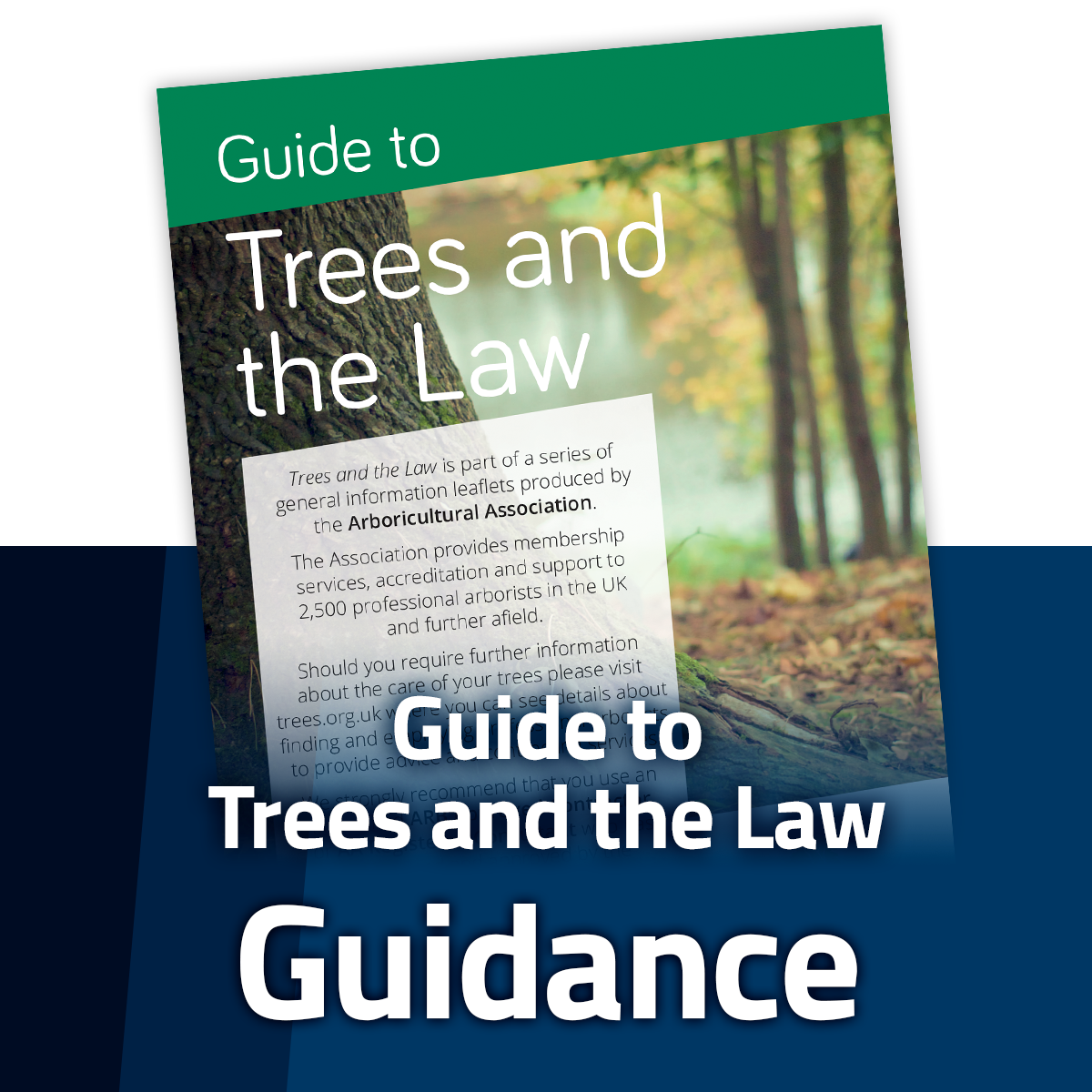 Guide to Trees and the Law