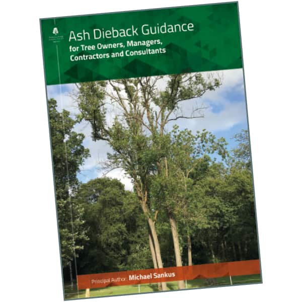 Ash Dieback Guidance