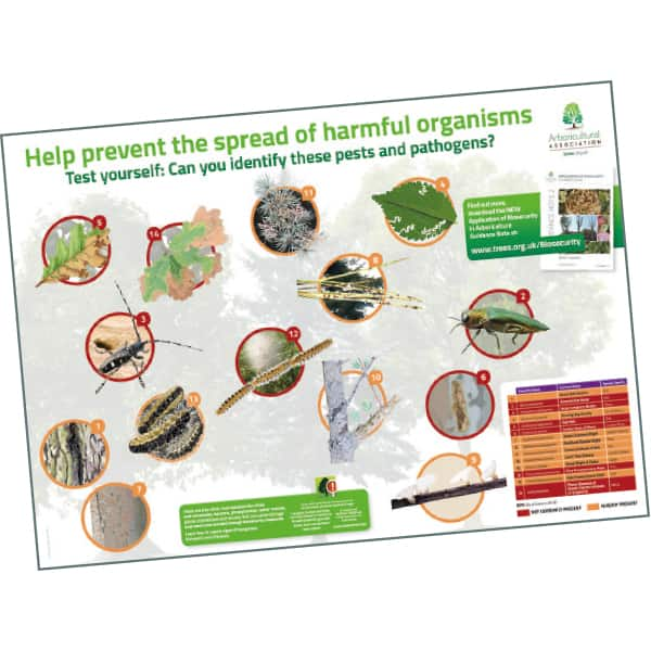 Pest and Disease Poster
