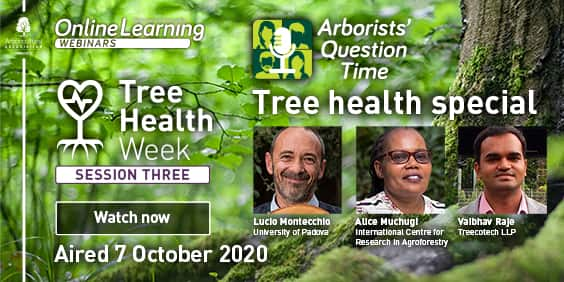 Tree Health Week – Session 3