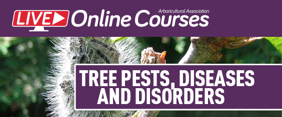 LIVE Online Course – Tree Pests, Diseases and Disorders