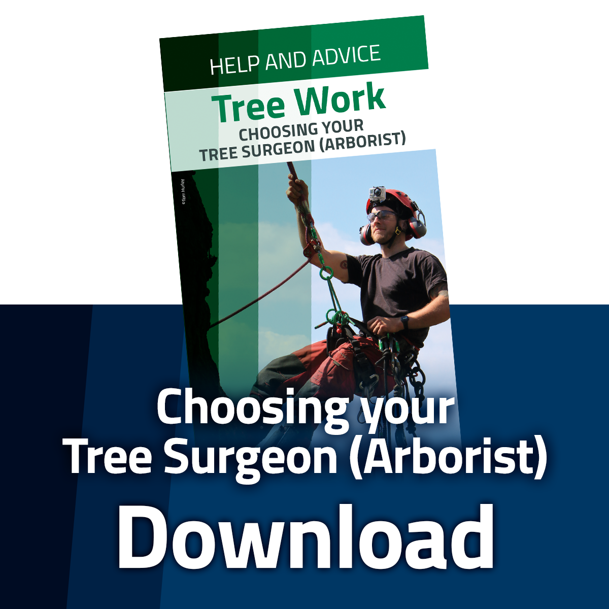 Download the Choosing Your Arborist Leaflet